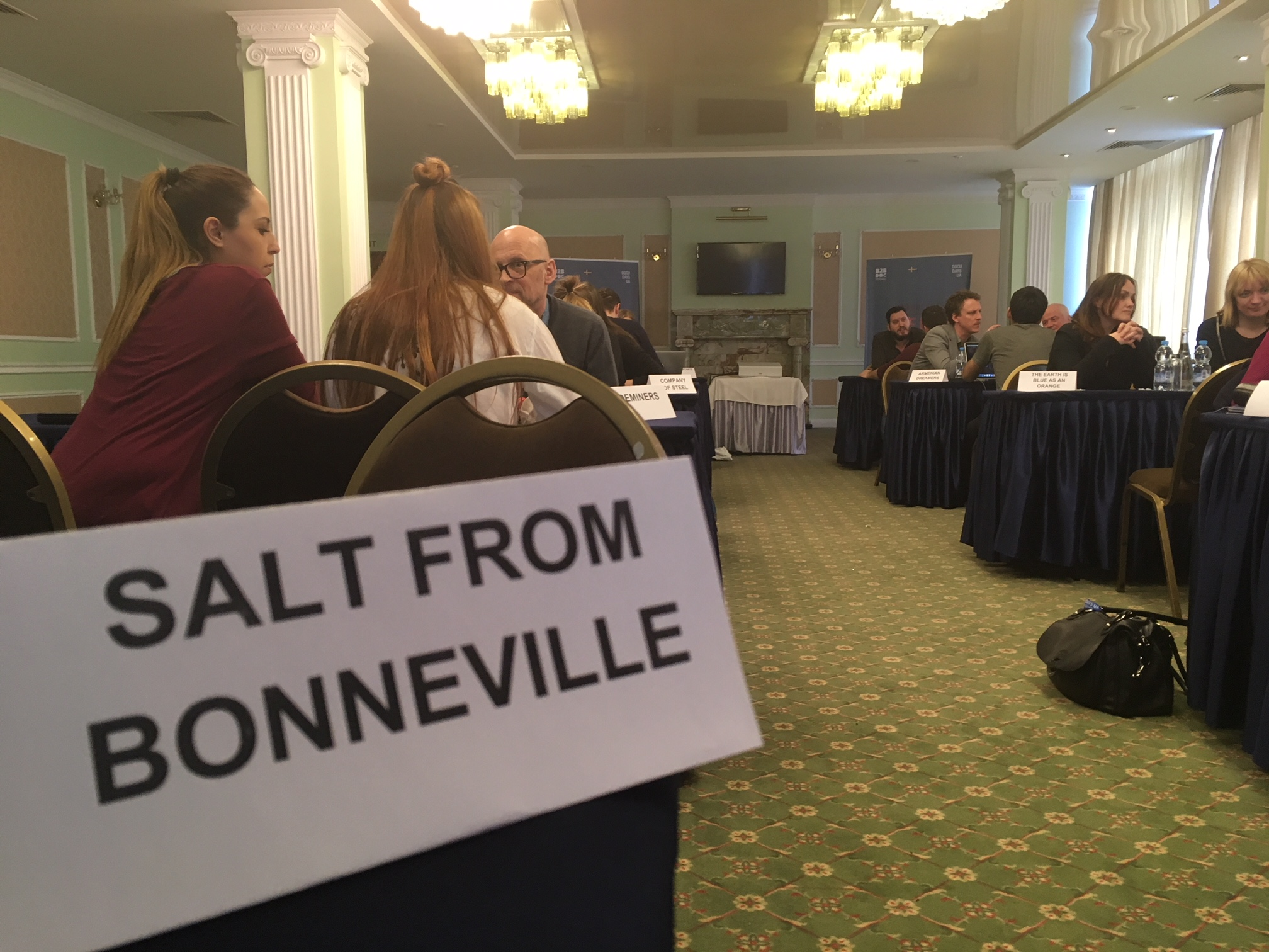 Salt from Bonneville was selected for Docudays pitching
