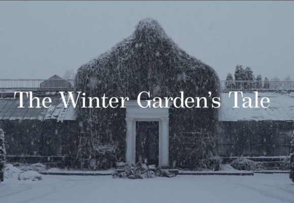 The Winter Garden's Tale